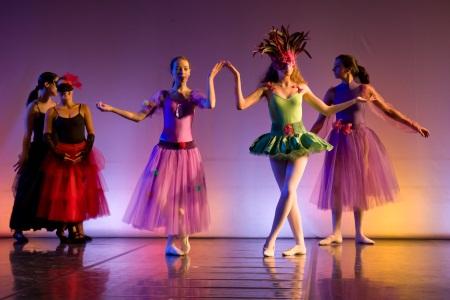 Activit s tempsdanse 65 la danse comme expression for Hauteur barre danse classique