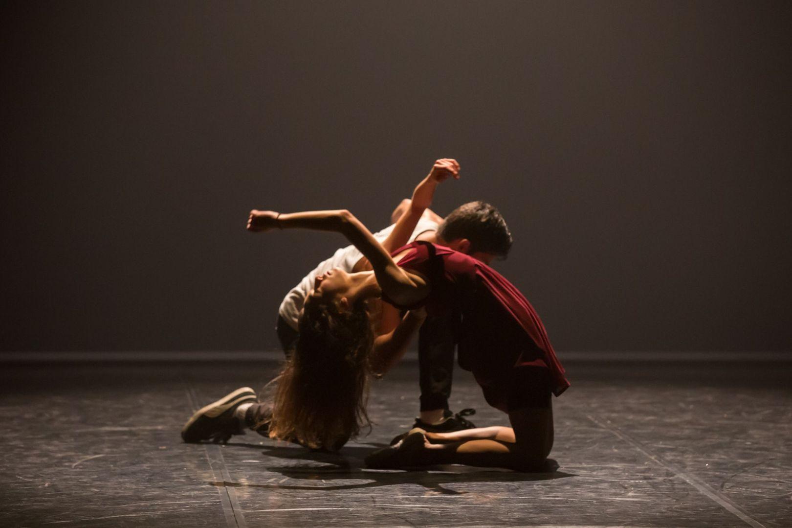 activit s tempsdanse 65 la danse comme expression universelle. Black Bedroom Furniture Sets. Home Design Ideas